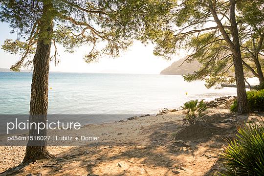 Magische Landschaft - p454m1516027 von Lubitz + Dorner