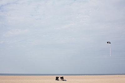 A break on the empty beach - p1513m2037611 by ESTELLE FENECH