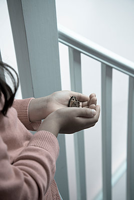 Little girl holding a dead butterfly - p1170m1090751 by Bjanka Kadic
