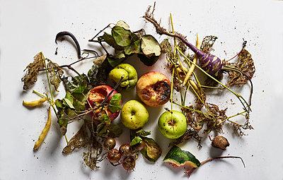 Gemüse - p1397m2054757 von David Prince