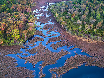 Burrell's Creek, St. Mary's, Georgia, USA - p343m2025901 by Peter Essick