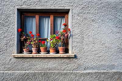 France, Pots of geraniums on the window sill of a house in Saint Veran in Savoie - p778m2288507 by Denis Dalmasso