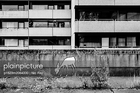 Deer graffiti - p1523m2064330 by Nic Fey