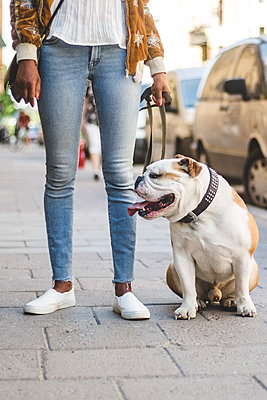 Low section of woman in jeans standing with English bulldog on sidewalk at city - p426m2046358 by Maskot