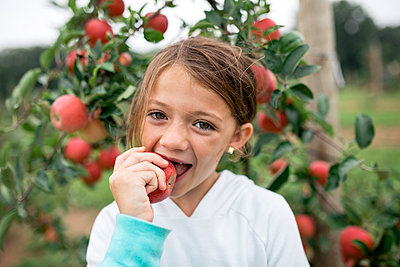 Portrait of cute girl biting apple while standing against fruit trees - p1166m2040033 by Cavan Images