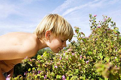 Boy Smelling Flowers - p4294040f by Soren Hald