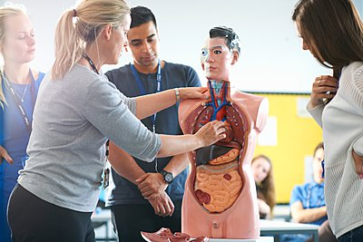 Lecturer speaking to college students in human anatomy class - p429m1079947f by Peter Muller