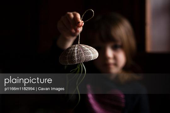 p1166m1182994 von Cavan Images