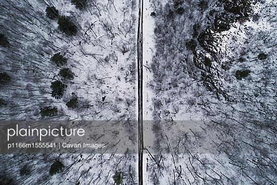 p1166m1555541 von Cavan Images