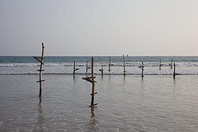 Stilt Fishing Poles in Sri Lanka - p180m2057002 by Martin Llado