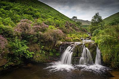 Water cascading over rocks on moorland habitat, Fairbrook, Peak District National Park, Derbyshire, England, United Kingdom, Europe - p871m1506612 by Robert Canis