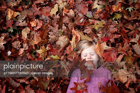 p1166m1182943 von Cavan Images