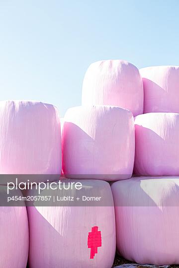 In rosa - p454m2057857 von Lubitz + Dorner