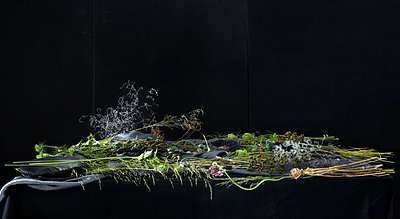 Plant Table - p1371m2015473 by virginie perocheau