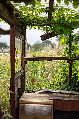Abandoned Shed - p1309m1158597 by Robert Lambert
