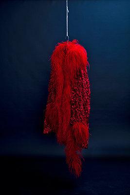 Roter Fummel - p318m1477335 von Christoph Eberle