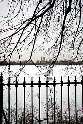 Central Park in winter - p3882071 by L.B.Jeffries