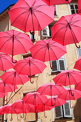 Rosa Regenschirme - p1040m2142944 von Dorothee Hörstgen
