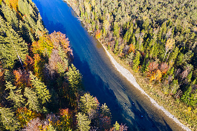 Germany, Upper Bavaria, Isar river, Nature Reserve Isarauen - p300m2062599 by Martin Siepmann