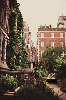 Hinterhof in New York City - p946m694747 von Maren Becker