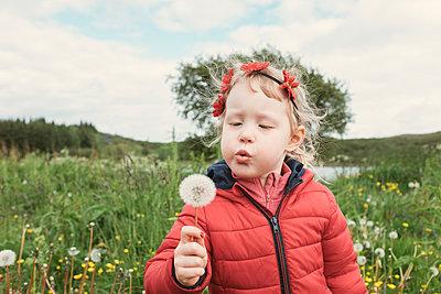 Girl blowing dandelion while standing on field - p1166m1543845 by Cavan Images