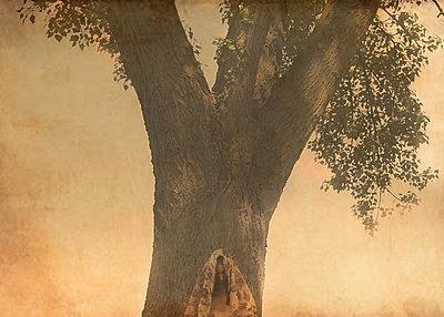Reveiled - p1453m1514240 by Alice de Kruijs