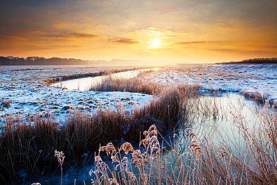Winding Dyke at Sunrise in Winter, Herringfleet, Suffolk, England - p651m2007115 by Tom Mackie