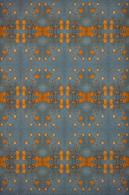 Computer generated abstract repeated pattern using dried pressed yellow flower on blue background - p1047m2222998 by Sally Mundy