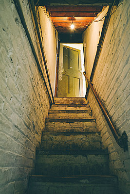 Cellar steps up to open door - p1072m1163370 by Neville Mountford-Hoare
