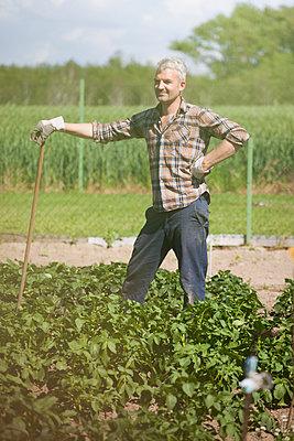 Smiling mature man with stick standing in vegetable garden - p301m961024f by Halfdark