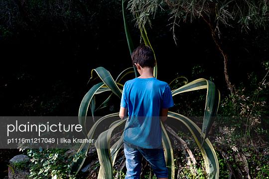 Junge mit Agave - p1116m1217049 von Ilka Kramer