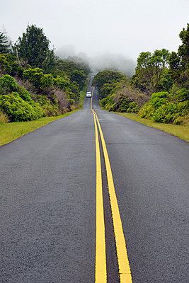 USA, Hawaii, Waimea, street in fog, Kokee State Park - p300m1023251f by Biederbick&Rumpf