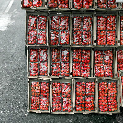 Strawberries for sale in a market, Paraguay - p1542m2173605 by Roger Grasas