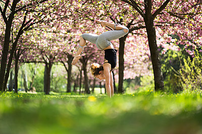 Yoga under Cherry Blossoms - p1545m2125095 by Caroline Wimmer