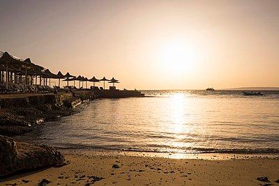 Beach at sunset, Hurgada, Red Sea, Egypt - p429m1046800f by Aliyev Alexei Sergeevich