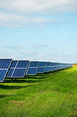 Solar panels in field, Ballum, Friesland, Netherlands - p429m1188090 by Mischa Keijser