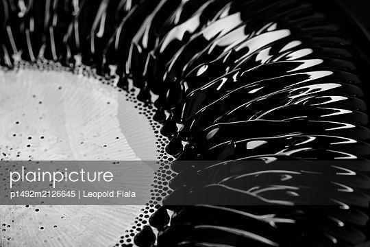 Magnetic fluids - p1492m2126645 by Leopold Fiala