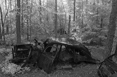 Autofriedhof - p1463m2192665 von Wolfgang Simlinger