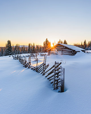 Wooden barn in winter landscape - p312m1472673 by Mikael Svensson