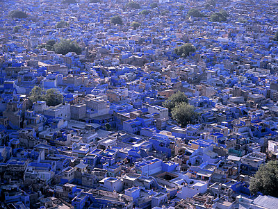 Aerial view of Blue City cityscape, Jodhpur, Rajasthan, India - p555m1409954 by Jeffrey Davis