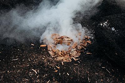Burning wood - p1683m2272041 by Luisa Zanzani