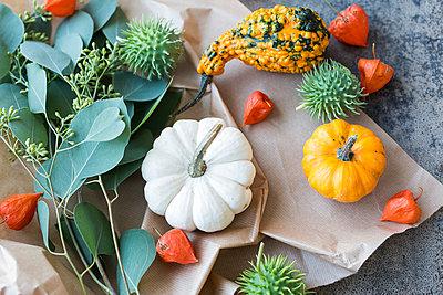Autumnal decoration, ornamental pumpkins - p300m2042189 von JLPfeifer