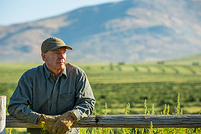 Caucasian farmer wearing gloves leaning on wooden fence - p555m1303715 by Steve Smith