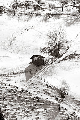 Hay shed, fence and cider apple trees in a snow covered valley viewed from above. - p1433m1590001 by Wolf Kettler
