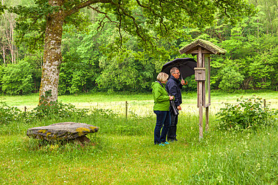 Senior hikers reading information sign in park - p312m2079436 by Marie Linnér