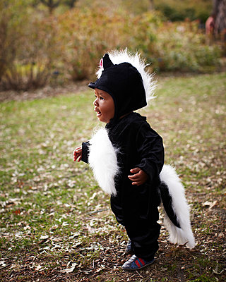 African American baby in skunk costume - p555m1480046 by David A Land