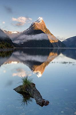 Mitre Peak, Milford Sound, Fiordland National Park, UNESCO World Heritage Site, South Island, New Zealand - p871m2068660 by Ed Rhodes