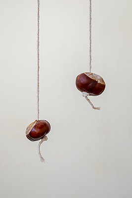 Two conkers on a length of string - p1228m1193644 by Benjamin Harte