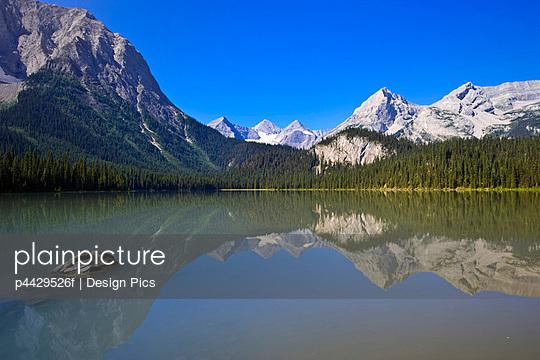 p4429526f von Design Pics