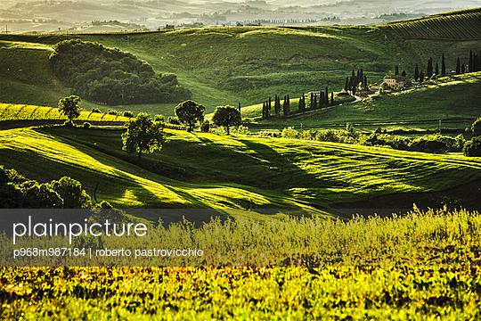 Tuscan hills, San Quirico d'Orcia - p968m987184 by Roberto Pastrovicchio